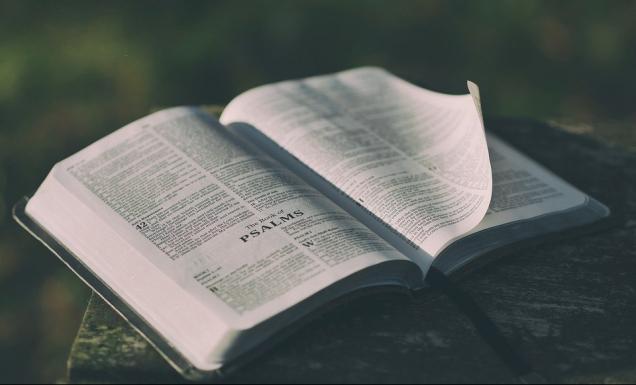 bible-1846174_960_720.jpg